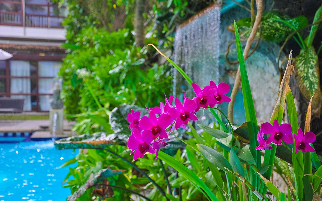 Wasserfall Am Pool Der Ayurveda Shunyata Villa ~ Sri Lanka